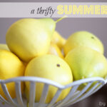 {Thrifty Thursday} A Summer Tablescape