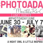 #PHOTOADAY Monthly Re-Cap Linky Party!