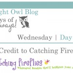 {7 Days of Giveaways} Day 4 :: Catching Fireflies