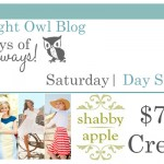 {7 Days of Giveaways} Day 7 :: Shabby Apple