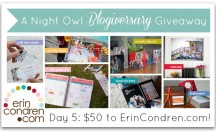 A Night Owl Blogiversary Giveaway - Day 5 - ErinCondren.com