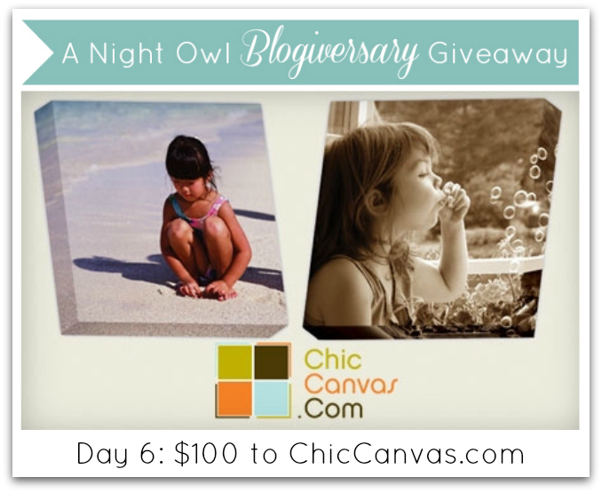 A Night Owl Blogiversary Giveaway - Day 6 - ChicCanvas.com