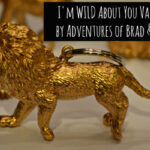 {14 Days of Valentines} I'm Wild About You Valentines