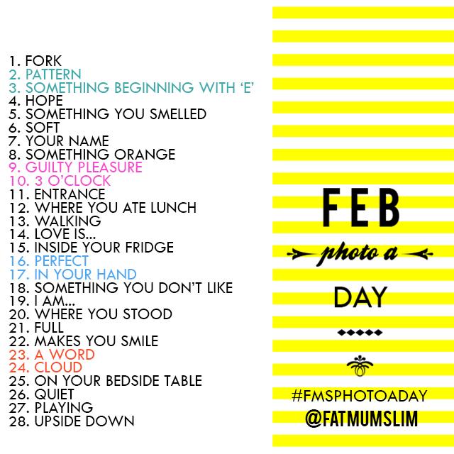 February #FMSPhotoaday by @FatMumSlim