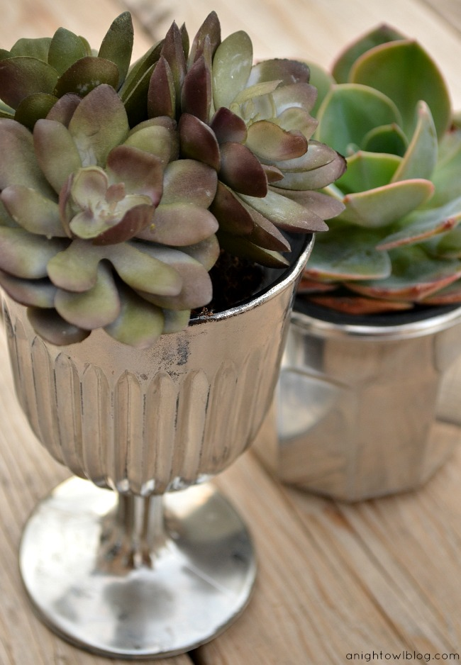 DIY Mercury Glass Succulent Planters