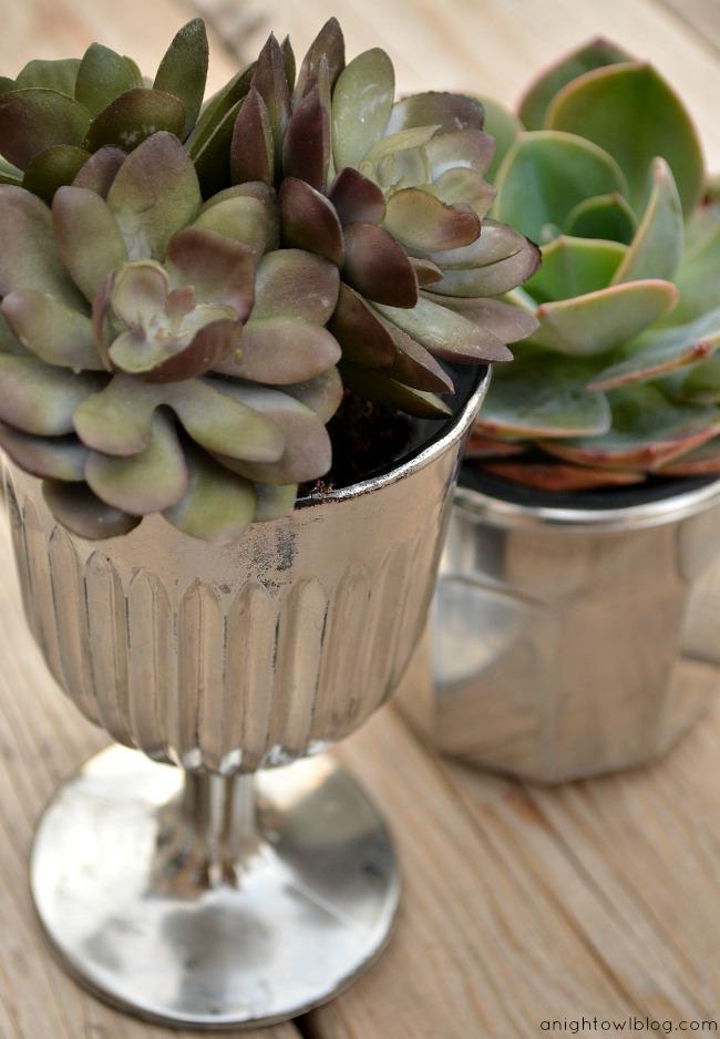 DIY Mercury Glass Succulent Planters