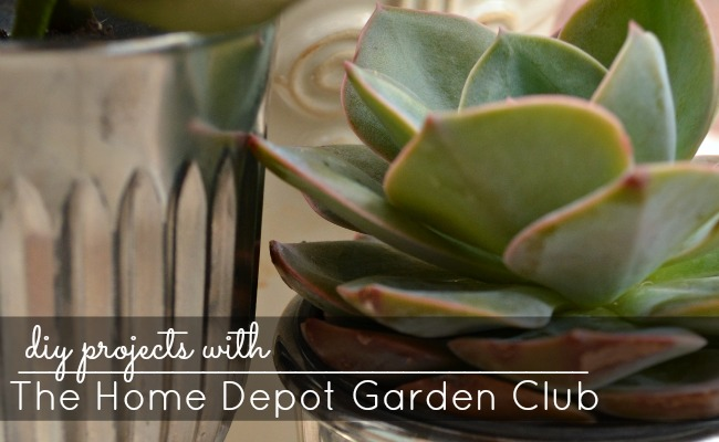Spring Diy Projects With The Home Depot Garden Club Digin