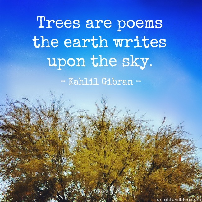 Trees are poems that the earth writes upon the sky. #DigIn