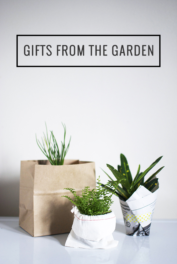 The Neighborhood: Gifts from the Garden