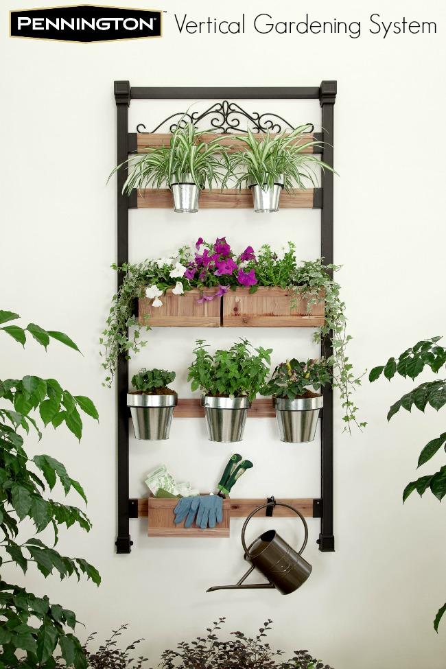 fresh homemade salsa with pennington vertical gardening system. Black Bedroom Furniture Sets. Home Design Ideas
