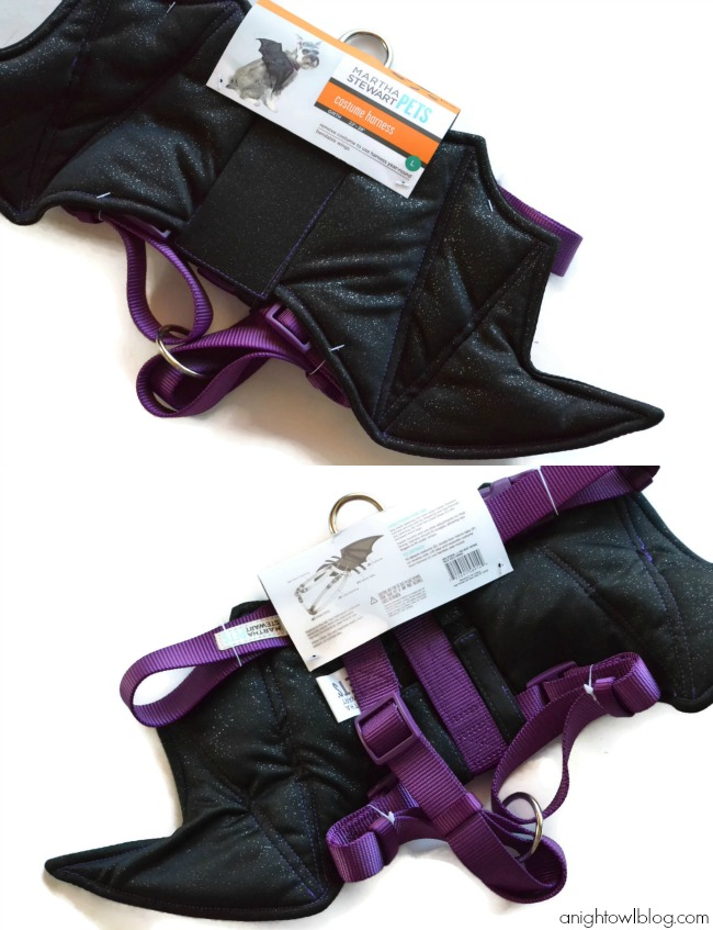martha stewart pets bat wing harness from petsmart marthastewartpets