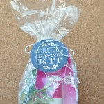 Mistletoe Survival Kit with Hello Breath Spray