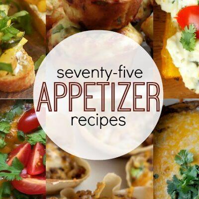 75+ Appetizer Recipes   anightowlblog.com