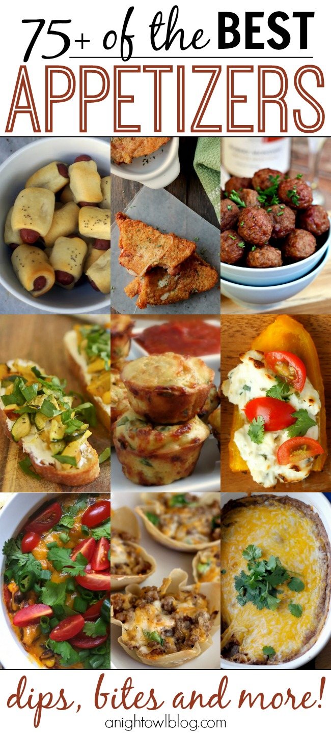 75 appetizer recipes a night owl blog so many amazing appetizer recipes on this list perfect for game day or your next forumfinder Image collections