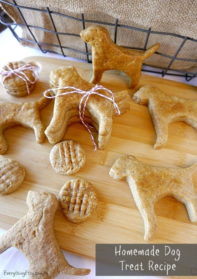 Homemade Dog Treat Recipe by Everything Etsy