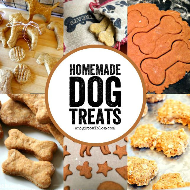 From Peanut Butter to Pumpkin, check out this fun list of homemade dog treats! Perfect for your furry friends!