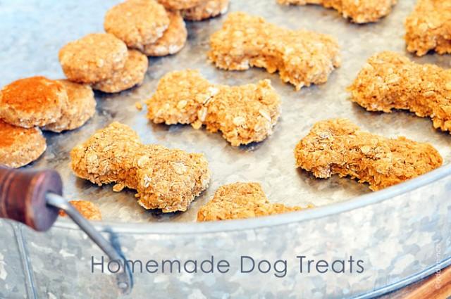 Homemade Dog Treats Recipe by Add a Pinch