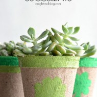 Lucky Succulents at SNAP Creativity!