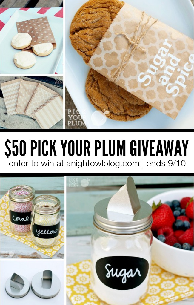 Pick Your Plum Giveaway at anightowlblog.com | Ends 9/10