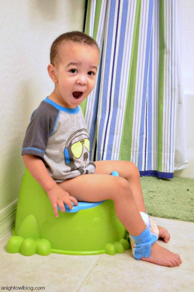 Potty Training - Lessons Learned | anightowlblog.com