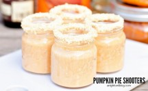 Add a little fun to your Fall! These Pumpkin Pie Shooters are delicious and can be made with or without alcohol!