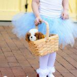 Wizard of Oz Dorothy Costume
