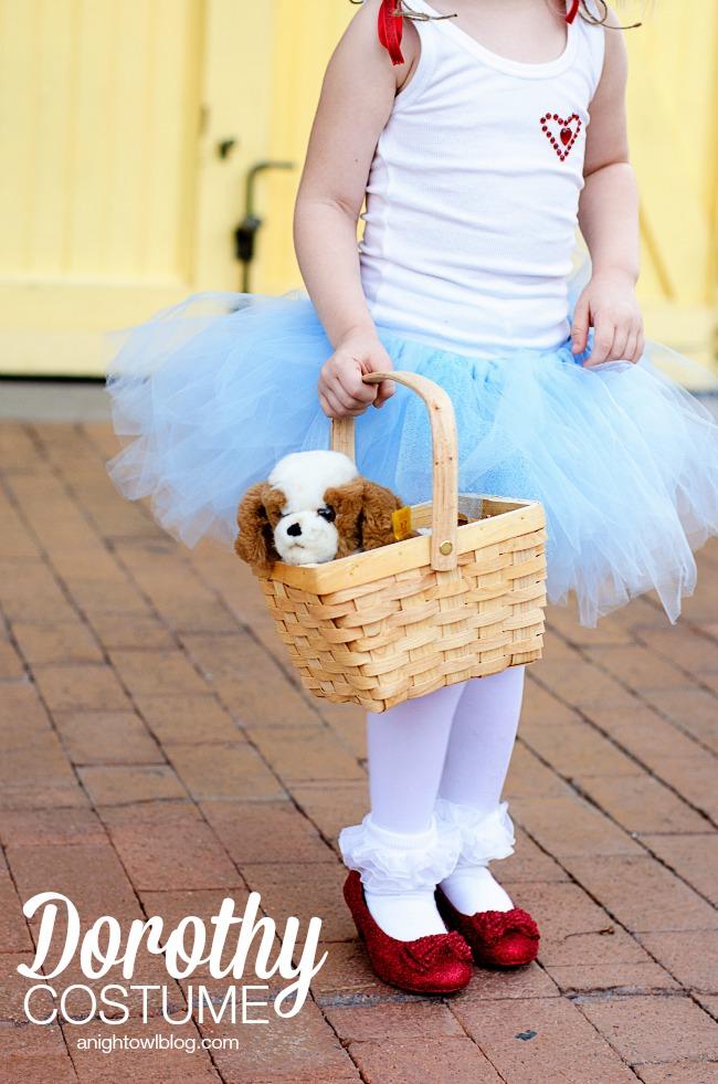 Wizard of Oz Dorothy Costume | anightowlblog.com