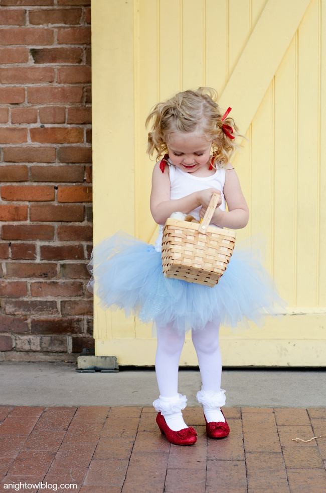 BHG Garden | Better Homes and Gardens Style Showcase ... & Wizard of Oz Dorothy Costume | A Night Owl Blog