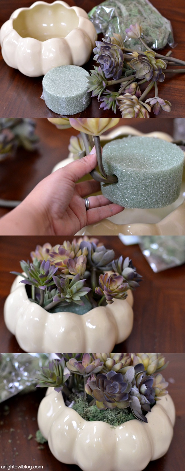 DIY Thanksgiving Succulent Centerpiece | anightowlblog.com