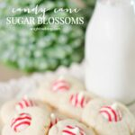 Candy Cane Sugar Blossoms