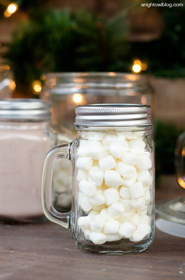 Hot Cocoa Bar in a Box - such a cute and easy gift idea!