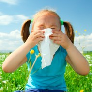 Tips for Fighting Childhood Allergies