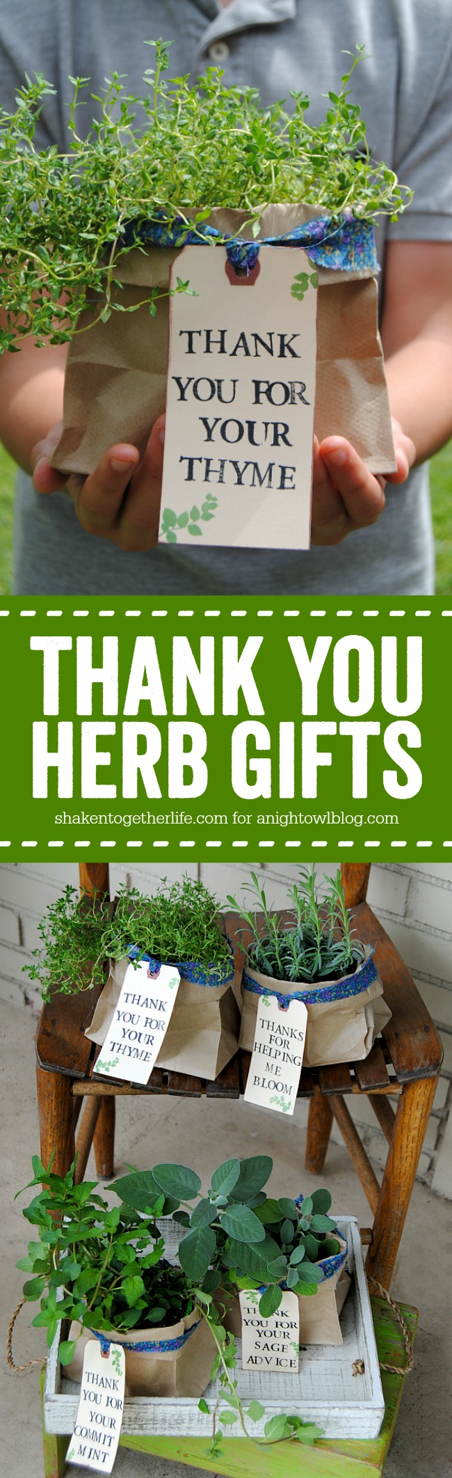 photo regarding Thank You for Your Commit Mint Printable named Thank Yourself Herb Presents A Night time Owl Weblog