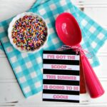 Ice Cream Scoop Teacher Gift