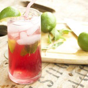 Wildberry-Mojito-FEATURE