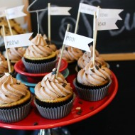 Chocolate Chip Cupcakes | Animal Sounds Birthday Party