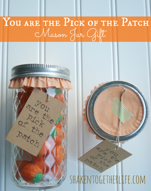 Pick of the Patch Mason Jar Gift at Shaken Together