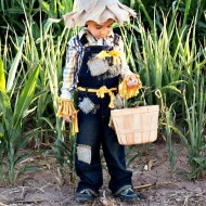 Easy No Sew Scarecrow Costume