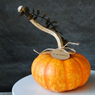 Eucalyptus Pumpkin Place Cards