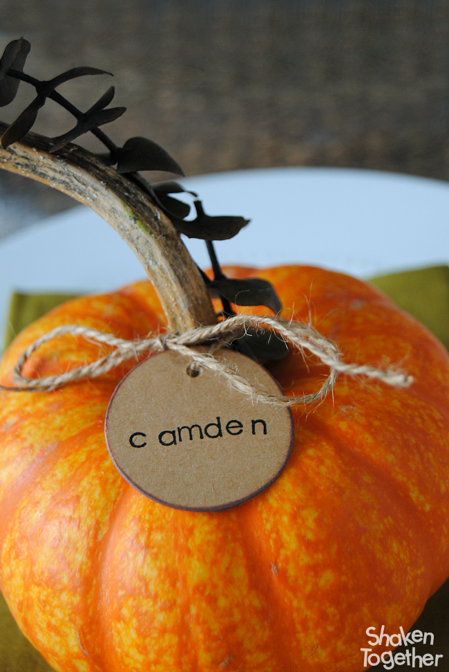 Eucalyptus Pumpkin Place Cards - an easy but elegant addition to your Thanksgiving table! They make a thoughtful favor for guests to take home, too!