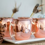 DIY Feather Drink Stirrers