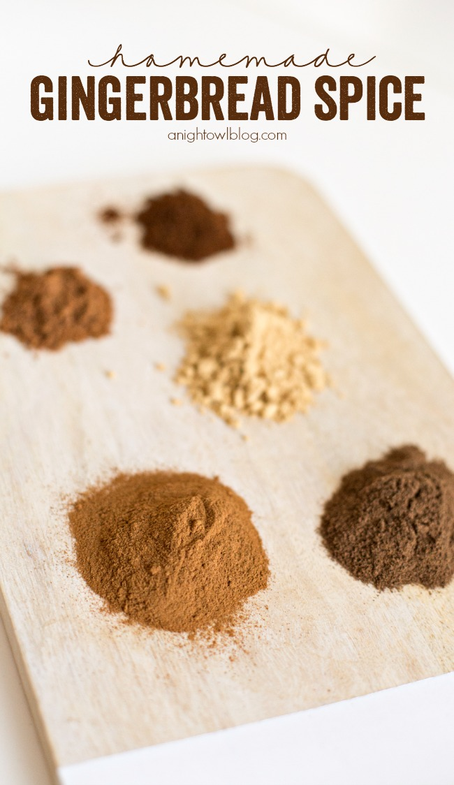 Homemade Gingerbread Spice - all the flavors of the holidays in one delicious spice blend!