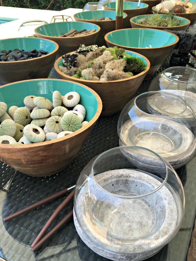Fun DIY Terrarium Station with Cost Plus World Market. Perfect idea for beach parties! #CelebrateOutdoors