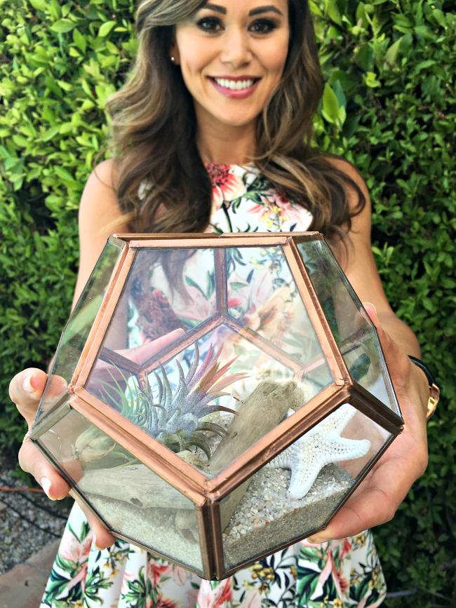 Lifestyle Expert Brandi Milloy created a DIY Terrarium with Cost Plus World Market. #CelebrateOutdoors