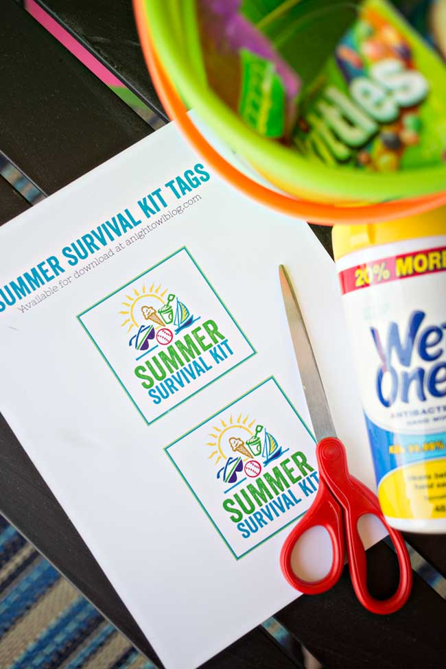 Survive the summer and all the fun messes you'll encounter with a Summer Survival Kit with Wet Ones® Hand Wipes!