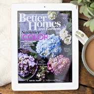 The Best App for Digital Magazine Subscriptions