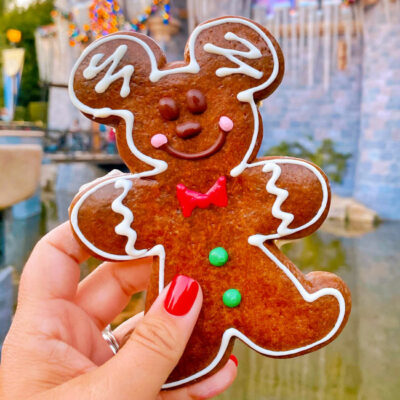 From the Santa Hat Macaron to Gingerbread Funnel Cake Fries check out our list of the BEST Disneyland Holiday Treats! #Disneyland #Disney