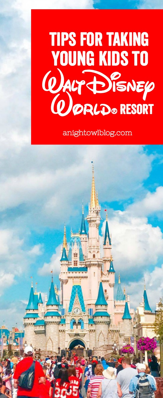 Planning a Disney Vacation with little ones? Check out our thoughts and experiences visiting The Walt Disney World Theme Parks with young kids and our tips for navigating and making the most of your trip!