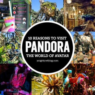 From the magical Floating Mountains to a mystical journey down the Na'vi River, we're sharing 10 Reasons to Visit Pandora - The World of Avatar at Disney's Animal Kingdom! #VisitPandora