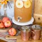 Spiced Apple Rum Punch